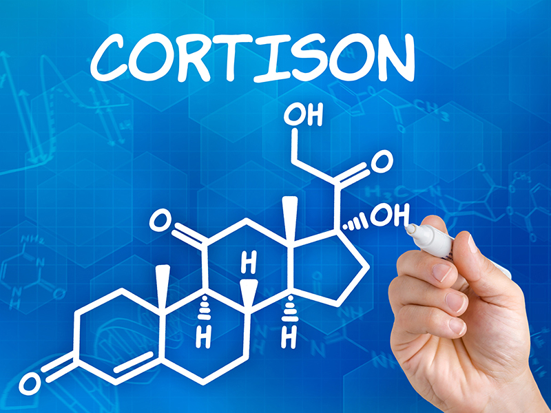 The active ingredient cortisone is also found in some eye ointments.
